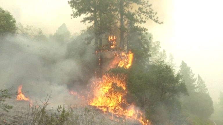Read more about the article Colonization Made California a Tinderbox: Why Indigenous Land Stewardship Would Help Combat Climate Fires