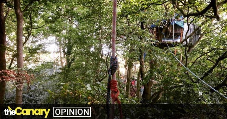'This is not just about a railway': meet the women at the forefront of the battle to save Jones Hill Wood