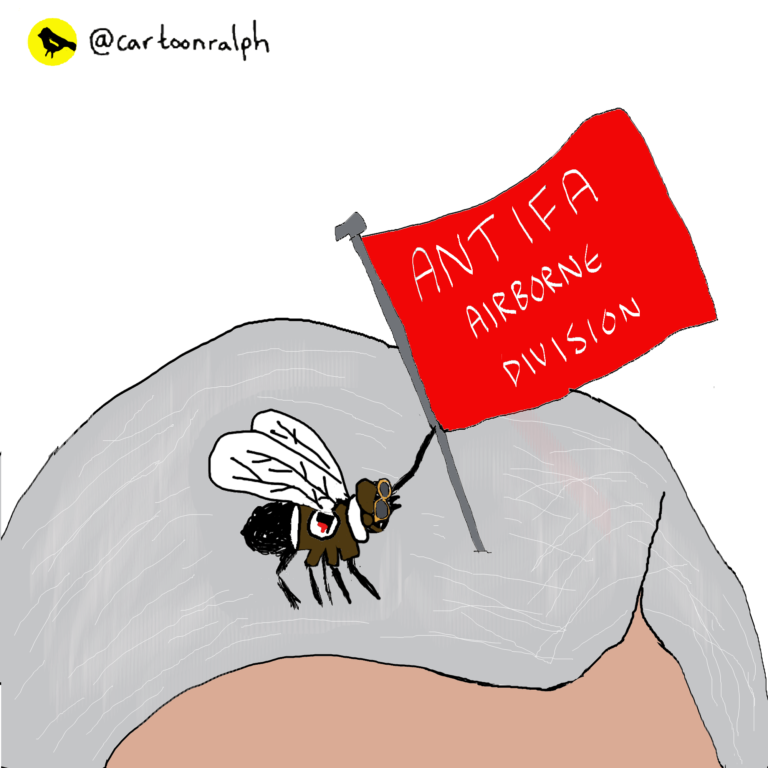 Read more about the article Antifa airborne division