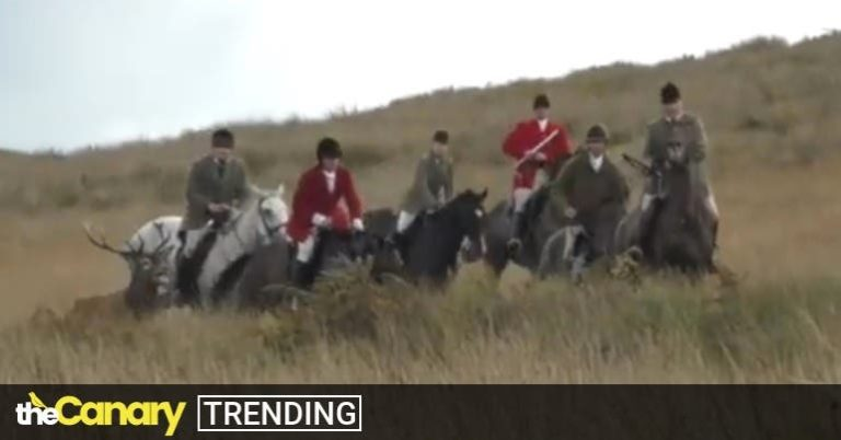 UK's pro-hunting group drops its members right in the sh*t after 'savage' video emerges