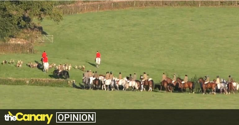 Social distancing doesn't apply to rich fox hunters terrorising cubs