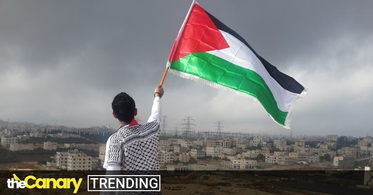 Read more about the article Here's what you can do to support Palestinians resisting apartheid, ethnic cleansing and settler-colonialism