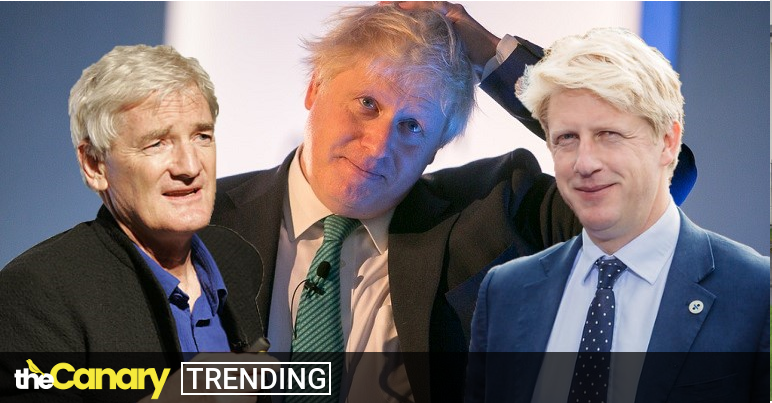 Read more about the article Boris Johnson's brother got a top job with Dyson just before THAT text exchange