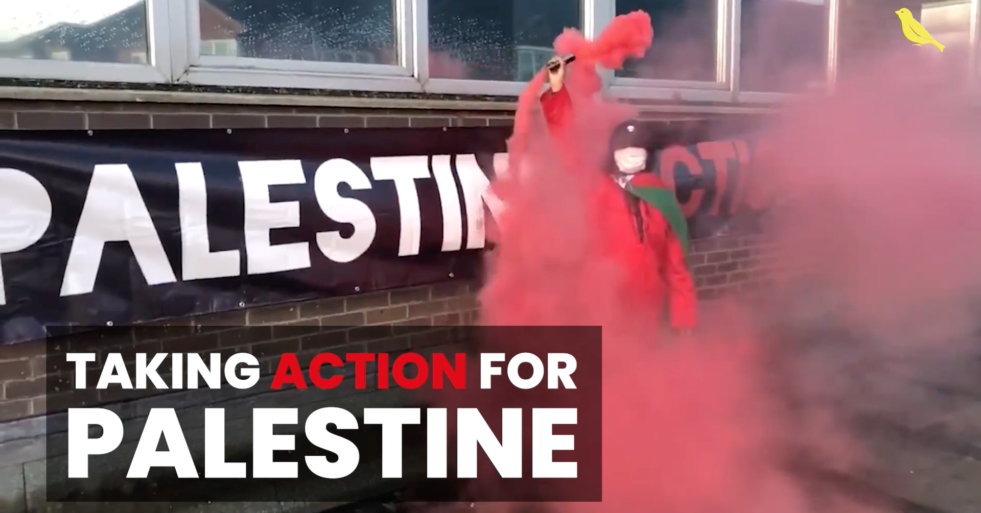 Read more about the article Taking action for Palestine | The Canary