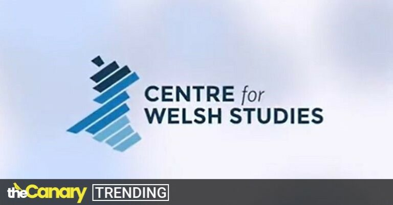 Read more about the article One tweet from a Tory Senedd member reveals a more sinister agenda in Wales