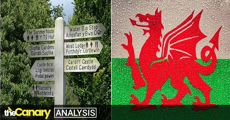 Read more about the article Campaigners demand a radical plan to achieve more than a million Welsh speakers